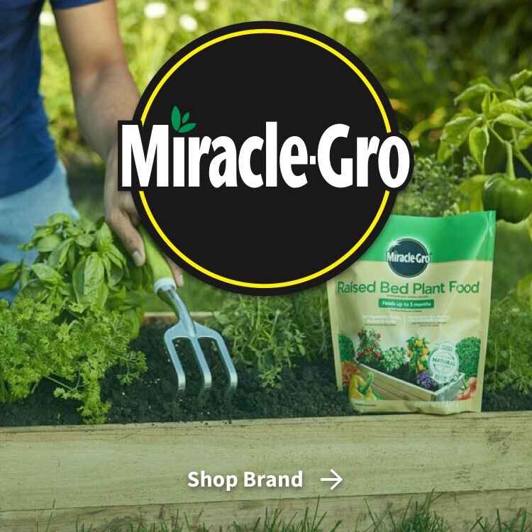 Miracle Gro logo with person working in garden with Raised Bed Plant Food package